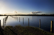 Flooded Banks of the River Suir Near Holy Cross County Tipperary Ireland von Panoramic Images