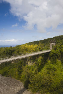 Suspension bridge in a valley, Pont des Anglais, St. Anne, Reunion Island by Panoramic Images