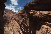 Low angle view of a canyon by Panoramic Images