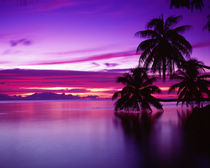 South Pacific, Morea by Panoramic Images