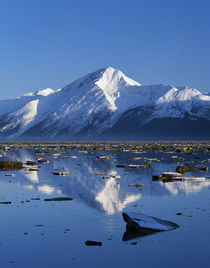 Chugach Mountains reflected between ice floes on Turnagain Arm, Alaska, USA. von Panoramic Images