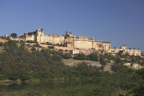 Low angle view of a fort, Amber Fort, Jaipur, Rajasthan, India von Panoramic Images
