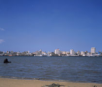 Driftwood on the beach, Delagoa Bay, Maputo, Mozambique by Panoramic Images