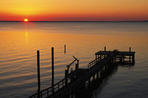 Silhouetted ocean pier at sunrise, Maryland, USA. von Panoramic Images