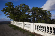 Walkway at the riverside by Panoramic Images