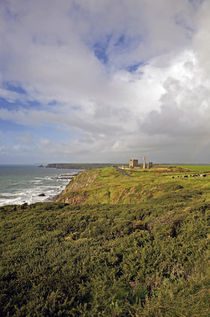 Tankardstown Copper Mine, Copper Coast, County Waterford, Ireland by Panoramic Images