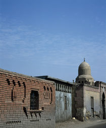 Buildings along a street, Egypt by Panoramic Images