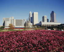 Buildings in a city, Charlotte, North Carolina, USA by Panoramic Images