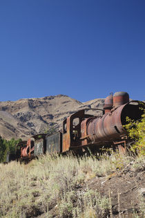 Low angle view of a locomotive in a museum by Panoramic Images
