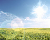 Sun shining over a field von Panoramic Images