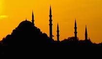 Silhouette of a mosque, Blue Mosque, Istanbul, Turkey von Panoramic Images