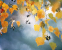 Golden leaves hanging above water by Panoramic Images