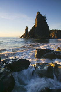 Sea stack and ocean surf on rocky Rialto Beach von Panoramic Images