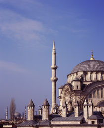 Architectural detail of a mosque, Blue Mosque, Istanbul, Turkey von Panoramic Images