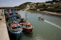 Fishing Boats, Helvick Port, Ring Gaelic Area, County Waterford, Ireland