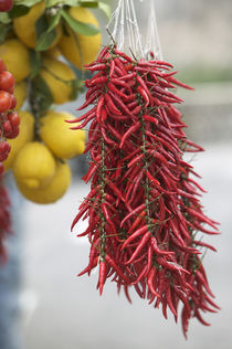 Close-up of lemons and red chili peppers by Panoramic Images