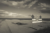 End road sign in desert by Panoramic Images
