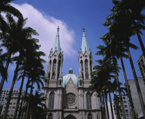 Palm trees in front of a cathedral, Sao Paulo Cathedral, Sao Paulo, Brazil von Panoramic Images