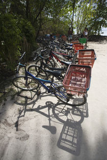 Bicycles parked on the beach by Panoramic Images