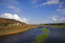 Flooded River Anne, Annestown, Copper Coast, County Waterford, Ireland by Panoramic Images