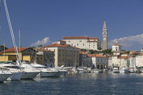 Boats at the harbor, Piran, Primorska, Slovenia by Panoramic Images
