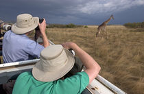 Rear view of two safari photographers filming a giraffe von Panoramic Images