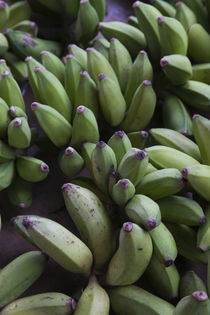 Close-up of bananas in a market, St. Paul, Reunion Island by Panoramic Images