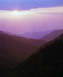 View of misty Smoky Mountains from overlook, sunset, Tennessee, USA. von Panoramic Images