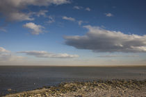 Clouds over sea, Salton Sea, Salton City, Imperial County, California, USA by Panoramic Images