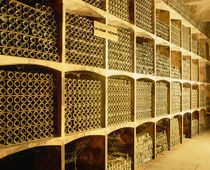 The wine cellar von Panoramic Images