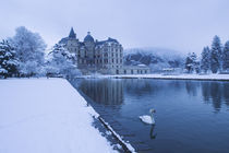 Lake in front of a chateau, Chateau de Vizille, Swan Lake, Vizille, France by Panoramic Images