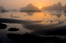 Pacific Sunset by Barbara Magnuson & Larry Kimball