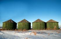 Green Grain Bins by Leslie Philipp