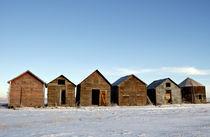Abandon Sheds by Leslie Philipp