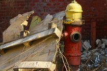 red and yellow hydrant in detroit von ushkaphotography