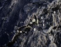 Rock von George Grigoriou