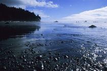Ruby Beach von Barbara Magnuson & Larry Kimball