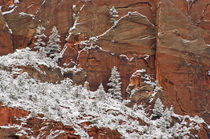 Red Rock & Snow von Barbara Magnuson & Larry Kimball