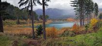Autumn von George Grigoriou
