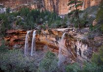Ephemeral Waterfalls in Heaps Canyon von Barbara Magnuson & Larry Kimball