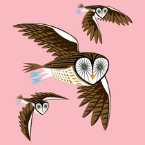 Owlinflightsociety