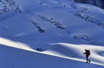 Ski Mountaineering Alaska by Scott Spiker
