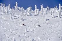 Ski-mt20