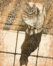 Window-cat4