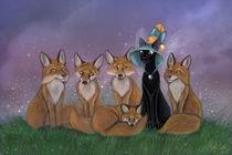 Fox Magic von Ash Evans