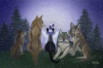 Wolf Moon von Ash Evans