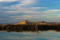 Utah_Landscape_4876 von Thom Gourley