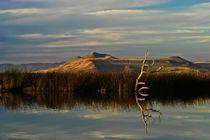 Utah_Landscape_4879 von Thom Gourley