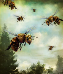 Crown of Bees by Rachael Shankman