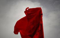 Wind Dancer von Bradley Kenyon